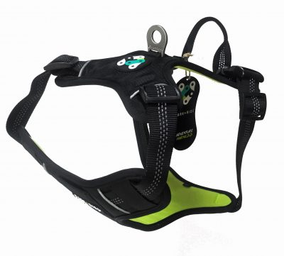durable harness with handle