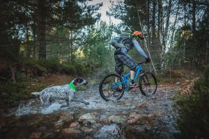BARK + RIDE is an outdoor lifestyle brand for active people and their dogs.