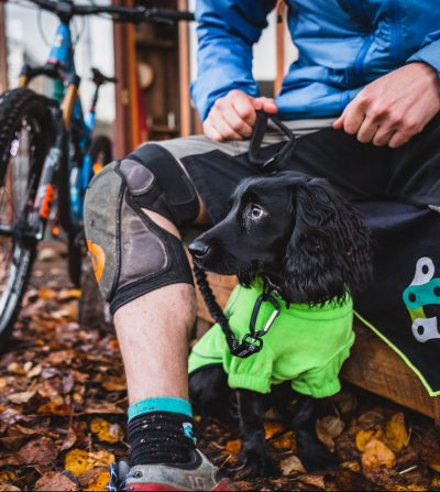 Bark + Ride Bungee Leash