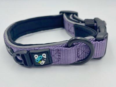 puppy trail collar